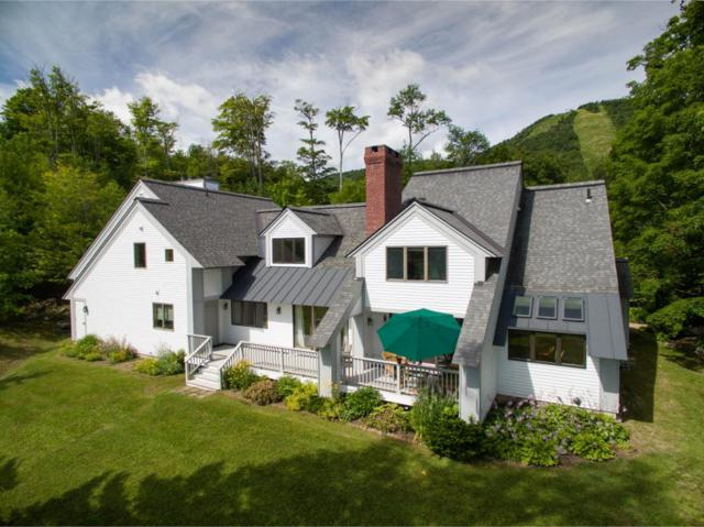 1265 Bear Mountain Road, Killington, VT 05751 (MLS #4676079) :: Keller Williams Coastal Realty