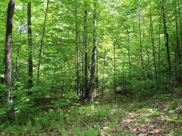 Lot #8 Peaked Hill Road, Ashland, NH 03217 (MLS #4681191) :: The Hammond Team