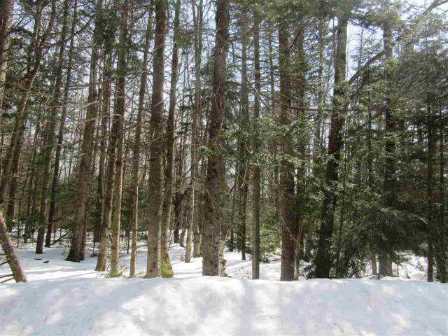 Deer Path Th 36 Road, Jay, VT 05859 (MLS #4687413) :: The Gardner Group