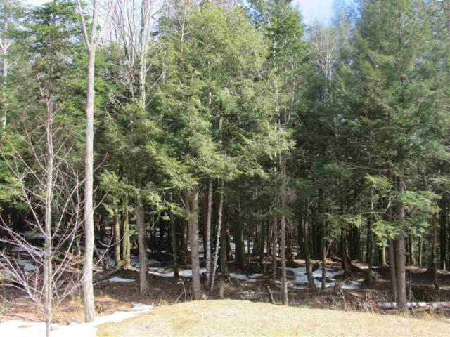 Lot 22 Wilderness Road Road, Jay, VT 05859 (MLS #4688185) :: The Gardner Group