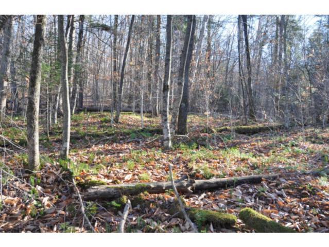 0 Hemlock Lane, Ripton, VT 05766 (MLS #4693828) :: Hergenrother Realty Group Vermont