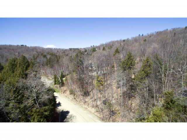 F17 Stone House Rd, Winhall, VT 05340 (MLS #4694591) :: Hergenrother Realty Group Vermont
