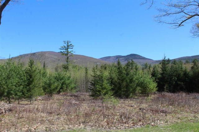 Lot 47 Winchester Drive Lot 47, Tuftonboro, NH 03816 (MLS #4697372) :: Keller Williams Coastal Realty