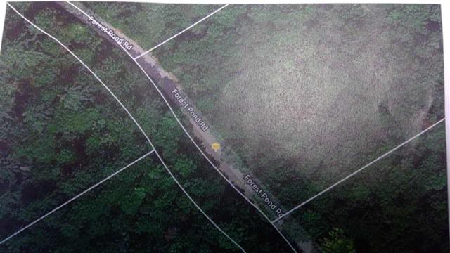 33 Forest Pond Road, New Hampton, NH 03256 (MLS #4701018) :: Keller Williams Coastal Realty