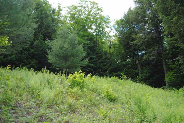 Folding Hills Road, Woodstock, VT 05091 (MLS #4702684) :: The Hammond Team