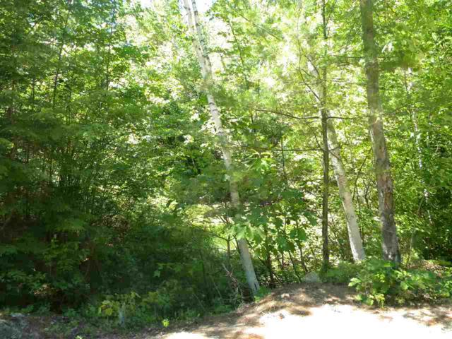 M 12 L 125, 126 East Washington Road, Washington, NH 03280 (MLS #4705570) :: Keller Williams Coastal Realty