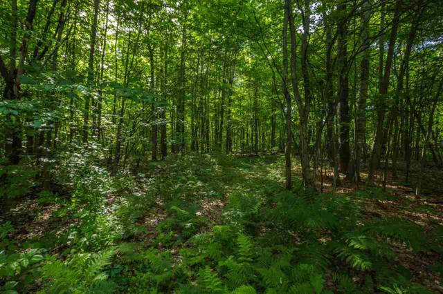 172 Watkins Road #3, Colchester, VT 05446 (MLS #4706087) :: The Gardner Group