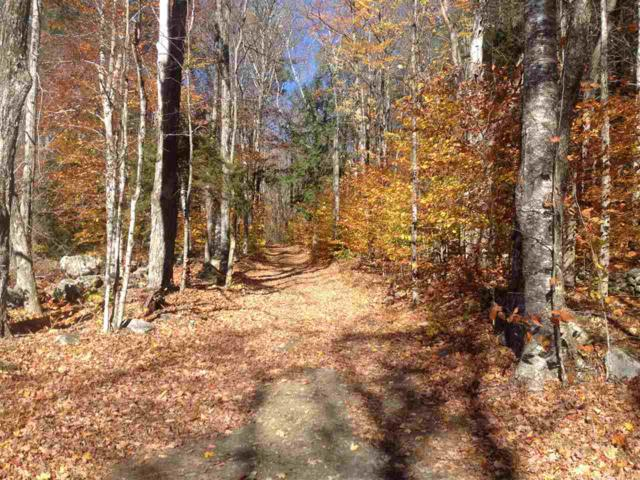 Lot 1B Toad Road, Windham, VT 05359 (MLS #4708132) :: Hergenrother Realty Group Vermont