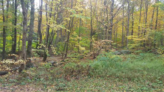 Lot #17 Poplar Drive #17, Jay, VT 05859 (MLS #4709264) :: The Gardner Group
