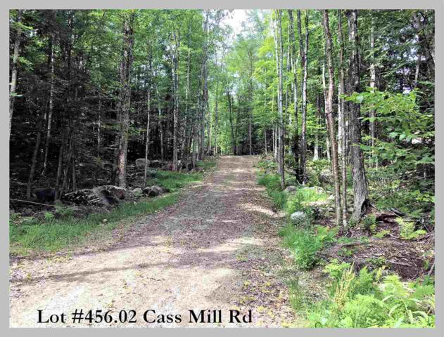 Lot 465.02 Cass Mill Road, Alexandria, NH 03222 (MLS #4710714) :: The Hammond Team