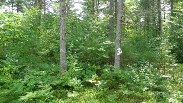 19 Benjamin Wentworth Road Lot 19, Tamworth, NH 03817 (MLS #4710965) :: Team Tringali