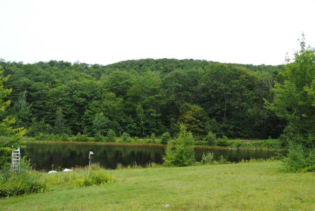 1013 Malagash Road, Reading, VT 05062 (MLS #4712715) :: Hergenrother Realty Group Vermont