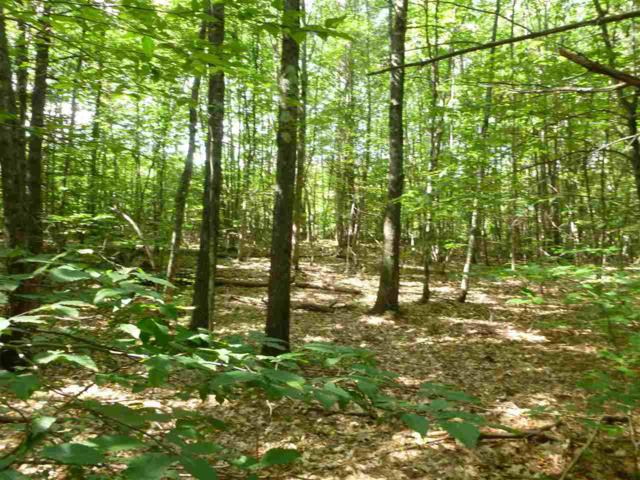 Lot 190-020 Heath / Lovell Lake Road, Wakefield, NH 03872 (MLS #4712768) :: Lajoie Home Team at Keller Williams Realty