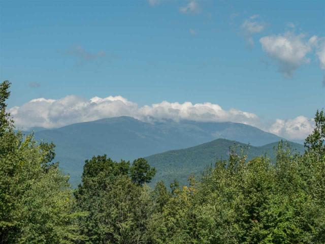 3-1 Mountain View Road #1, Bartlett, NH 03812 (MLS #4713998) :: Lajoie Home Team at Keller Williams Realty