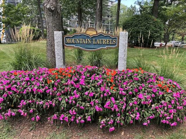 10 Mountain Laurels Drive #206, Nashua, NH 03062 (MLS #4717794) :: The Hammond Team