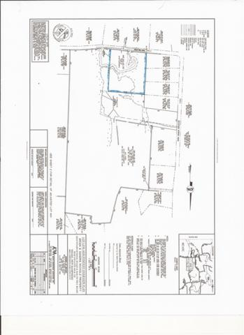 Lot 160 Balch Hill Road Drive Map 410  Lot 16, Weare, NH 03281 (MLS #4719622) :: Lajoie Home Team at Keller Williams Realty