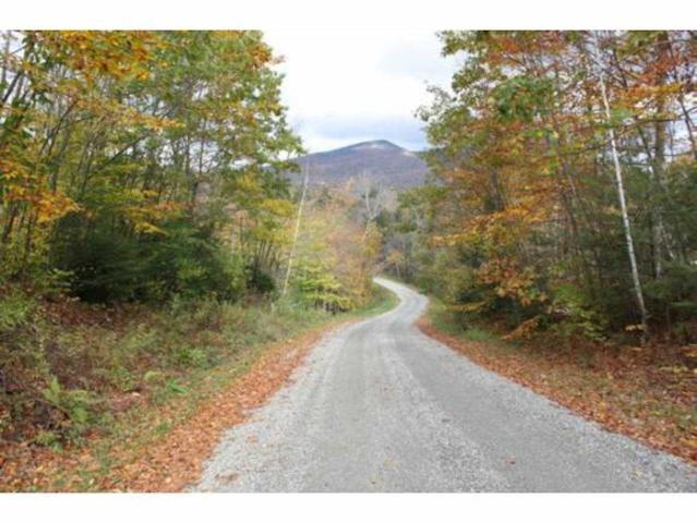 13 Alden Road Lot #13, Sunderland, VT 05250 (MLS #4721277) :: The Gardner Group