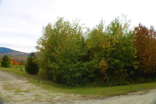 - Overlook Drive, Westmore, VT 05860 (MLS #4723223) :: The Gardner Group