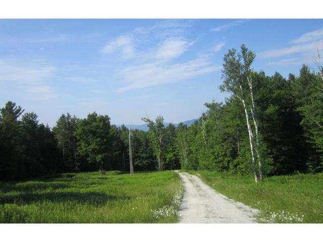 Dix Hill Road Lot 23, Plymouth, VT 05056 (MLS #4723844) :: The Gardner Group