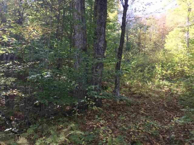 0 Skytop Drive, Newbury, NH 03255 (MLS #4725570) :: Hergenrother Realty Group Vermont