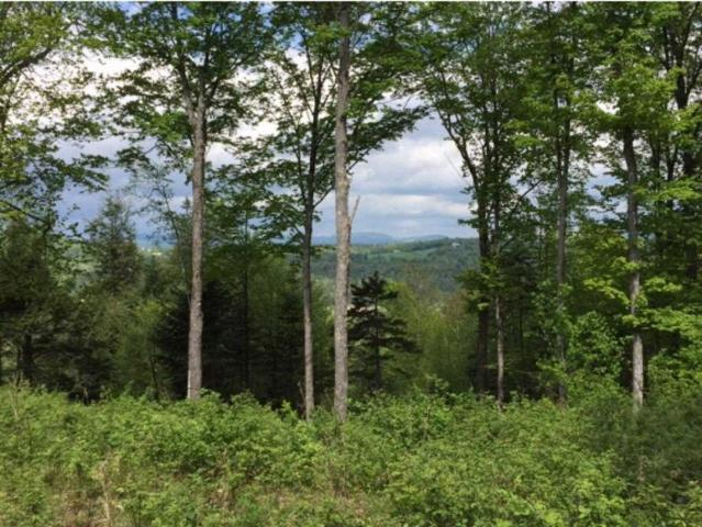 00 Monash Road 4, 5 & 7, Burke, VT 05832 (MLS #4725741) :: Keller Williams Coastal Realty
