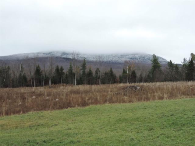 Town Hgwy 13 Knowles Flat Road, Eden, VT 05652 (MLS #4726745) :: The Hammond Team
