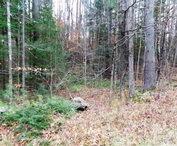 Lot 1 Middletown Road, Londonderry, VT 05148 (MLS #4727301) :: The Gardner Group