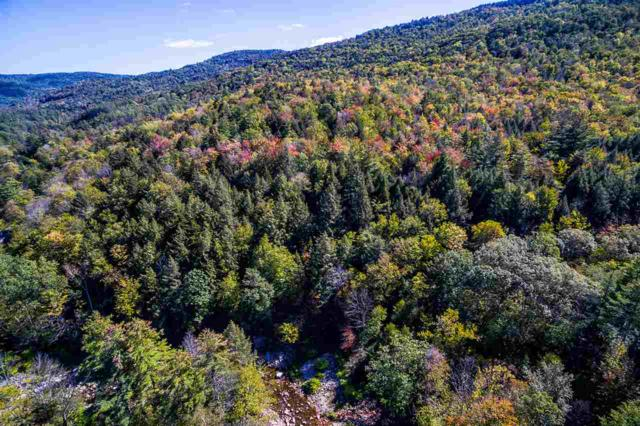 1-2 Gilfeather Road, Wardsboro, VT 05355 (MLS #4727831) :: The Gardner Group