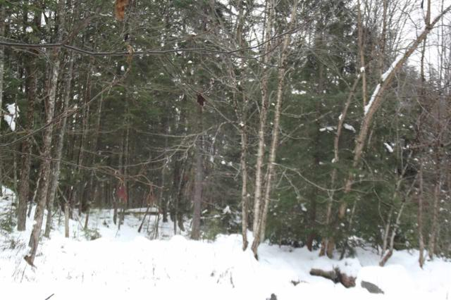 2560 North Road, Maidstone, VT 05905 (MLS #4729176) :: The Gardner Group