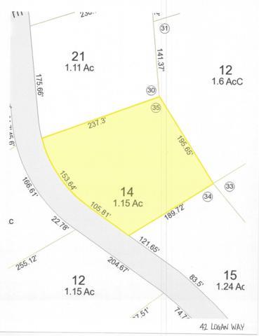 42 Logan Way, Ossipee, NH 03890 (MLS #4730220) :: Keller Williams Coastal Realty