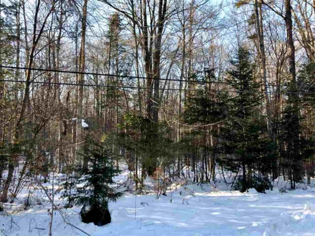 Hawk Spur Road Lot 2, Plymouth, VT 05056 (MLS #4730462) :: The Hammond Team