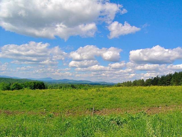 Lot #19 Campbell Road, Morristown, VT 05661 (MLS #4732161) :: Lajoie Home Team at Keller Williams Realty