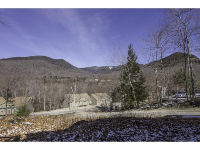 48 Black Mountain Road, Lincoln, NH 03251 (MLS #4733653) :: The Hammond Team