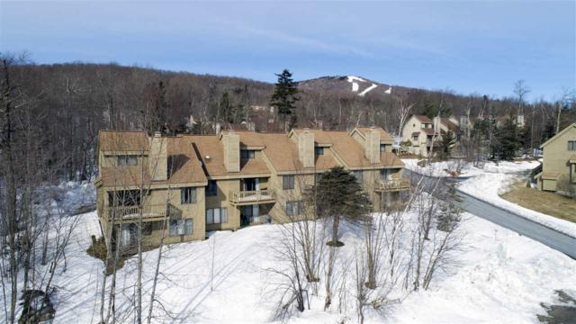 66 Sugar Brook Road E3, Peru, VT 05152 (MLS #4738539) :: The Gardner Group