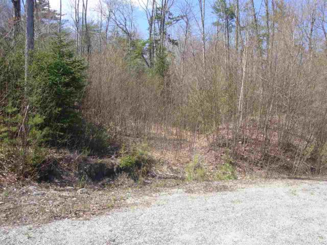 Lot 3 Old Fields Road #3, Groton, NH 03241 (MLS #4741521) :: Parrott Realty Group