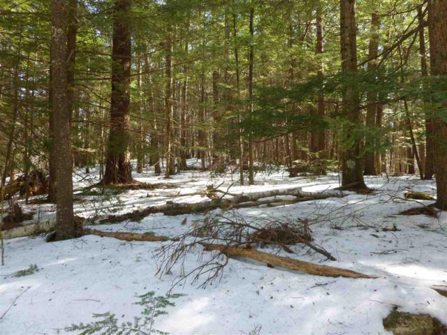 Map 22  Lot 113 White Birch Road, Barnstead, NH 03225 (MLS #4741548) :: Lajoie Home Team at Keller Williams Realty