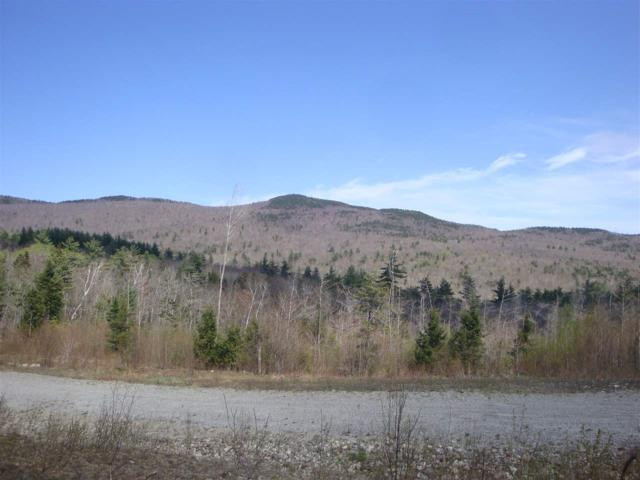 Lot 5 Old Fields Road, Groton, NH 03241 (MLS #4741560) :: Parrott Realty Group