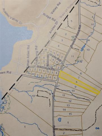 TBD Beach Pond Road Plan Book 20 Pg, Wolfeboro, NH 03894 (MLS #4742925) :: Parrott Realty Group
