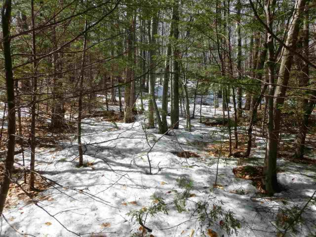 Lot 32 Ragged Mountain Road, New Durham, NH 03855 (MLS #4744306) :: Lajoie Home Team at Keller Williams Realty