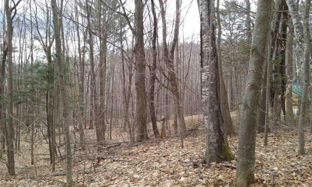 017-017-022 Holland Trail, Thornton, NH 03285 (MLS #4746857) :: Keller Williams Coastal Realty