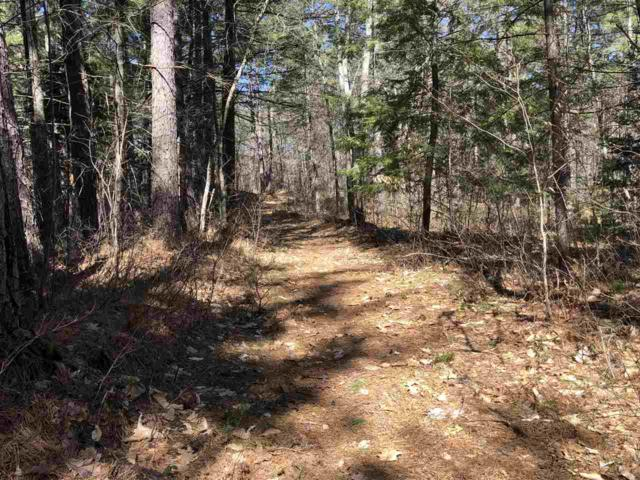 Trout Run #53, Effingham, NH 03882 (MLS #4750037) :: Parrott Realty Group
