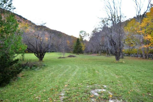 3833 Brandon Mountain Road Road, Rochester, VT 05767 (MLS #4750133) :: Keller Williams Coastal Realty