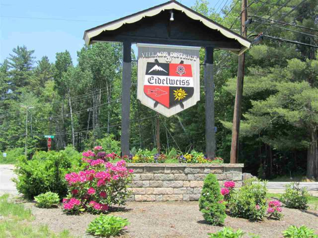 16 Visp/Waldsbut Road, Madison, NH 03849 (MLS #4750383) :: Hergenrother Realty Group Vermont
