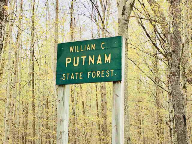 00 Putnam Forest Road #005037, Grafton, VT 05146 (MLS #4752141) :: Parrott Realty Group