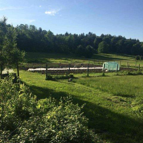 1825 Hallstrom Road, Northfield, VT 05663 (MLS #4752443) :: Hergenrother Realty Group Vermont
