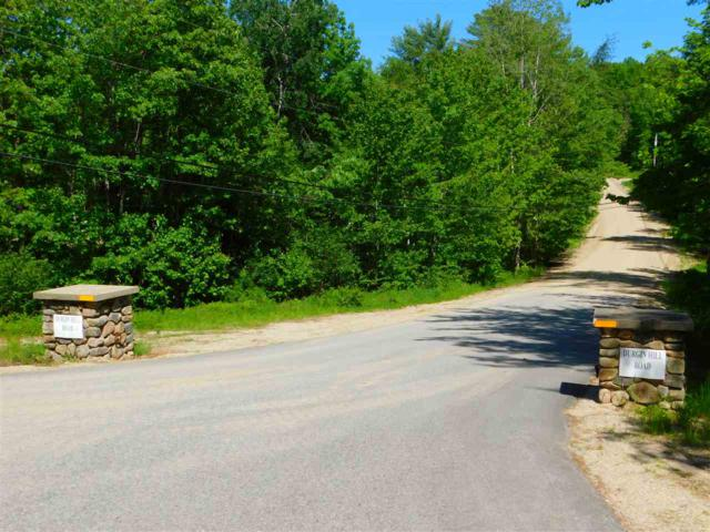 00 Durgin Hill Road, Freedom, NH 03836 (MLS #4758355) :: Hergenrother Realty Group Vermont