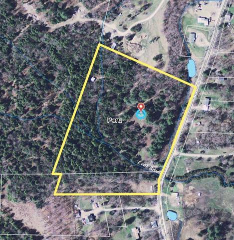 950 South Road, Peru, VT 05152 (MLS #4759376) :: The Gardner Group
