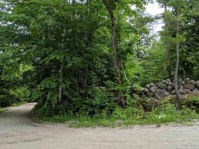 Lot 27.2 Moran Road, Hopkinton, NH 03229 (MLS #4759412) :: Jim Knowlton Home Team
