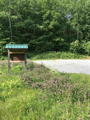 7748 Route 100 Route, Readsboro, VT 05350 (MLS #4760534) :: The Gardner Group