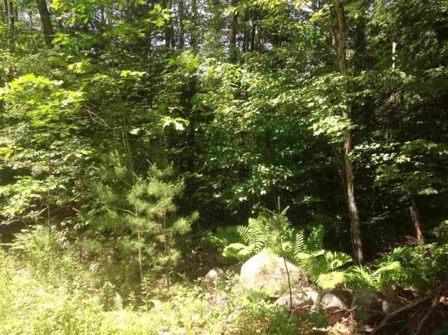 19 Pratt Road, Effingham, NH 03882 (MLS #4760561) :: Keller Williams Coastal Realty